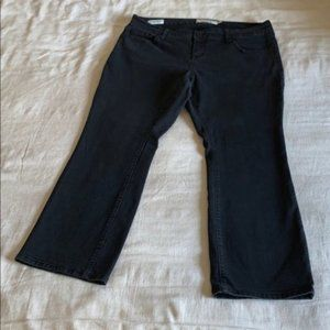 XSHORT Torrid Washed Black Barely Boot Jeans 14XS